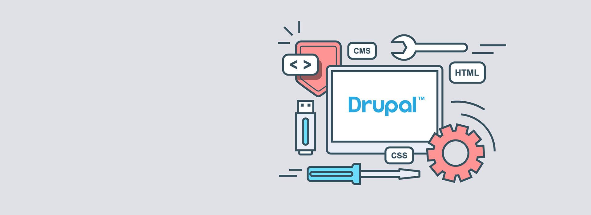 Drupal Entwickler